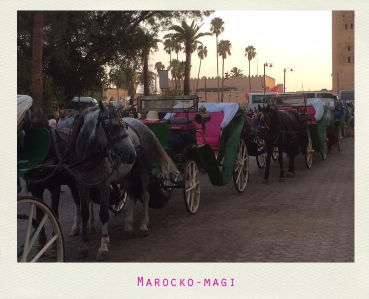 vecka32_marocko17