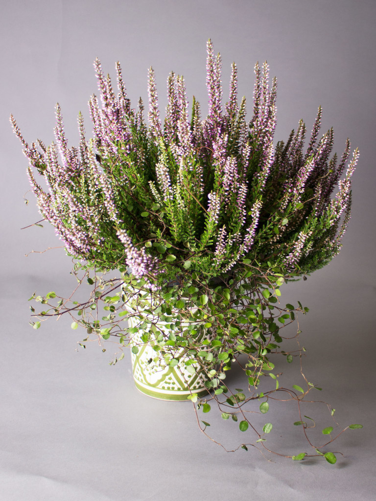 Blomkruka Rif Design - Grön 15cm