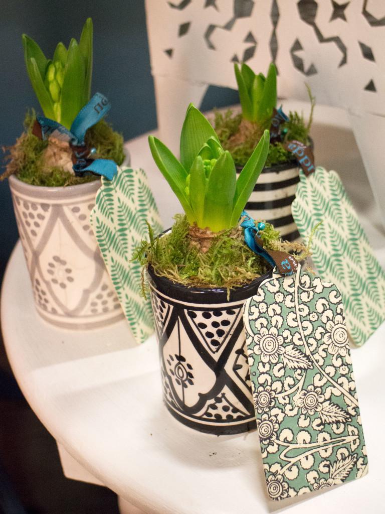 hyacinttags