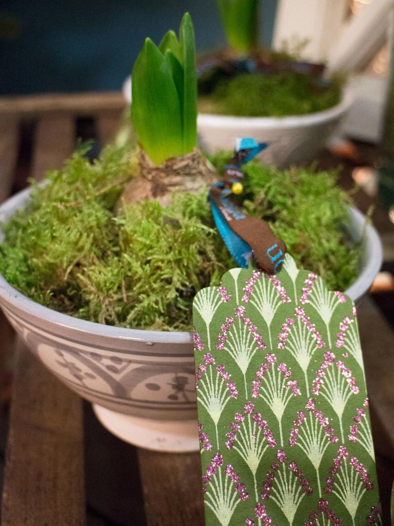hyacinttags2